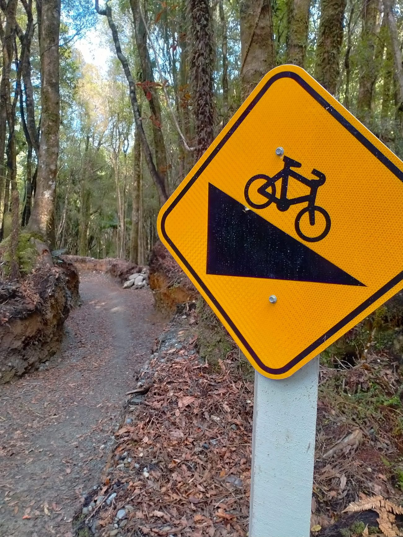 Taking the West Coast Wilderness Trail off-road